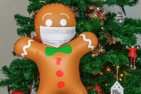 Large inflatable cookie man with covid-19 mask as decoration on Christmas tree. Air blown seasonal gingerbread figure before illuminated artificial decorated green tree with lights.