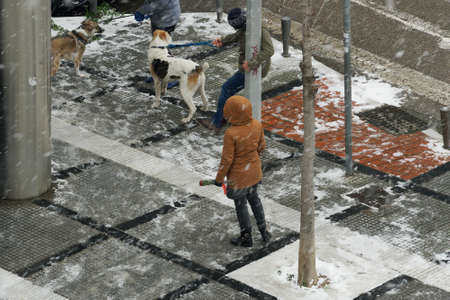 Thessaloniki, Greece - February 14 2021: Dog owners walk with pets on a leash at the snow. Day view of unidentified people with their canine in warm clothes during heavy snowfall at a city sidewalk.