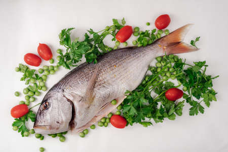 Whole dentex fish ready to cook top view, against white background. Close up of freshwater seafood, garnished with cherry tomatoes, fresh peas and parsley leaves on a flat surface.