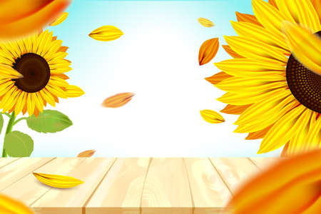 Sunshine and bokeh with yellow sunflower and blue sky background 向量圖像