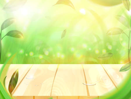 Sunshine and bokeh with Wooden floor and Green leaves in forest background, natural concept Çizim