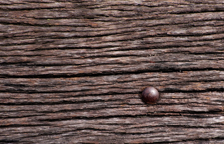 outworn: Old brown grunge wood with rust nail background