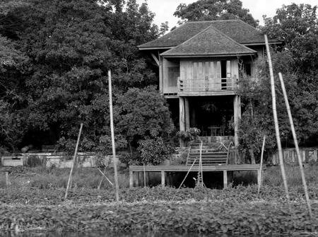 heartsick: Riverside casa abandonada de madera entre los �rboles
