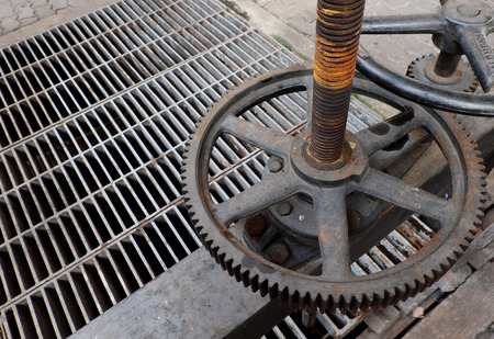 metal grate: A rusty metal gear among drain metal grate