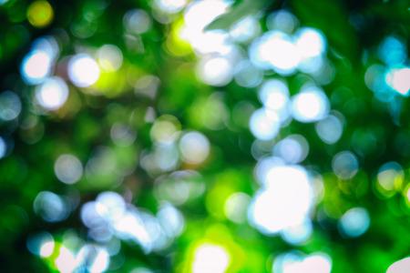 darken: blur bokeh of lights comes through trees and leaves (darken in edge around of frame)
