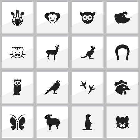 brute: Set Of 16 Editable Nature Icons. Includes Symbols Such As Talisman, Owl, Sow And More. Can Be Used For Web, Mobile, UI And Infographic Design.