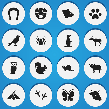 brute: Set Of 16 Editable Nature Icons. Includes Symbols Such As Bull, Talisman, Honey And More. Can Be Used For Web, Mobile, UI And Infographic Design. Illustration