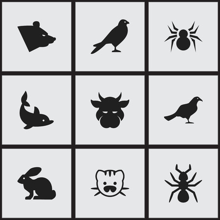 brute: Set Of 9 Editable Zoology Icons. Includes Symbols Such As Beast, Bedbug, Grizzly And More. Can Be Used For Web, Mobile, UI And Infographic Design.