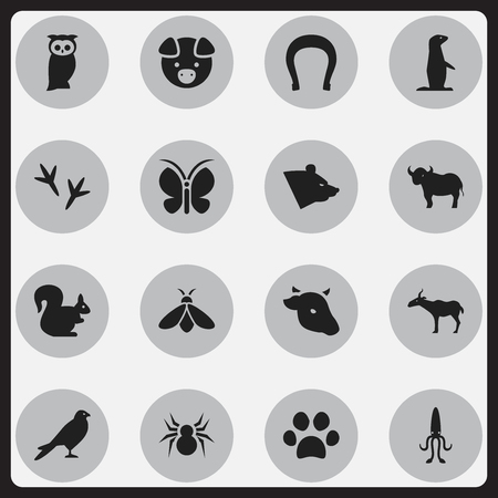 spidery: Set Of 16 Editable Animal Icons. Includes Symbols Such As Gazelle, Eagle, Wild Rodent And More. Can Be Used For Web, Mobile, UI And Infographic Design. Illustration