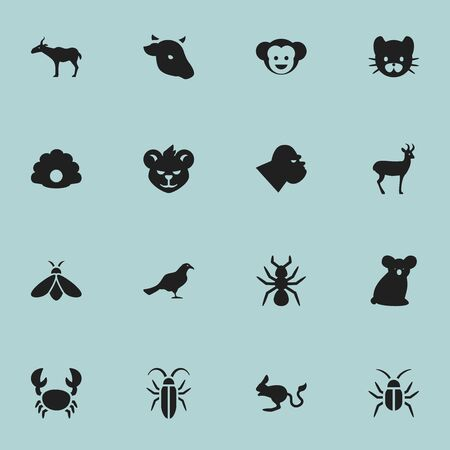 Set Of 16 Editable Animal Icons. Includes Symbols Such As Australian Bear, Tiger, Cockroach And More. Can Be Used For Web, Mobile, UI And Infographic Design.