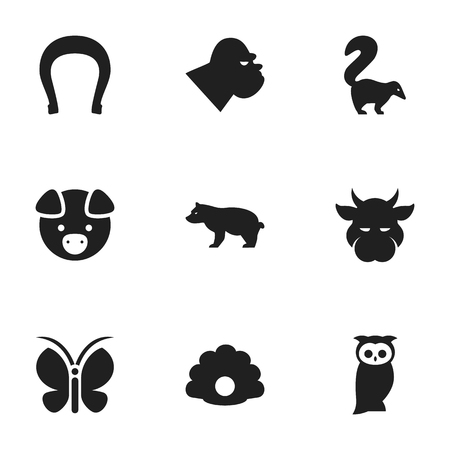 Set Of 9 Editable Nature Icons. Includes Symbols Such As Moth, Kine, Polar Animal And More. Can Be Used For Web, Mobile, UI And Infographic Design.
