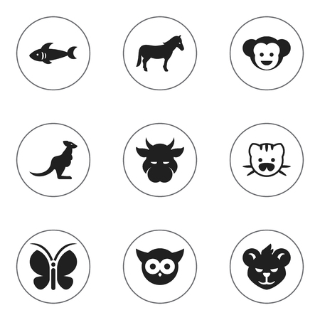brute: Set Of 9 Editable Animal Icons. Includes Symbols Such As Baboon, Night Fowl, Wallaby And More. Can Be Used For Web, Mobile, UI And Infographic Design. Illustration