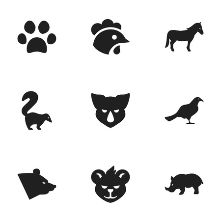 brute: Set Of 9 Editable Zoo Icons. Includes Symbols Such As Skunk, Grizzly, Gull And More. Can Be Used For Web, Mobile, UI And Infographic Design.