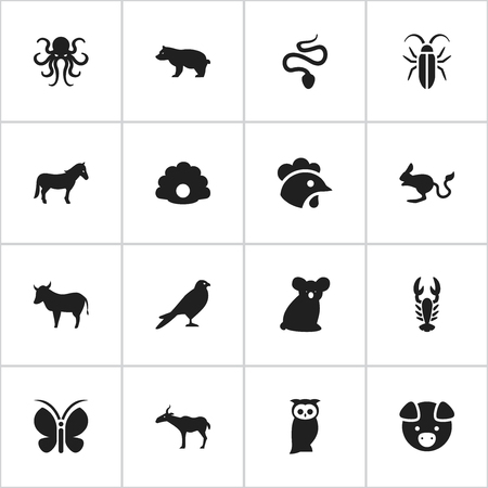 Set Of 16 Editable Nature Icons. Includes Symbols Such As Hog, Rooster, Owl And More. Can Be Used For Web, Mobile, UI And Infographic Design.