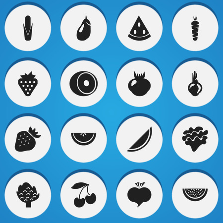 petiole: Set Of 16 Editable Fruits Icons. Includes Symbols Such As Radish, Muskmelon, Allium And More. Can Be Used For Web, Mobile, UI And Infographic Design.