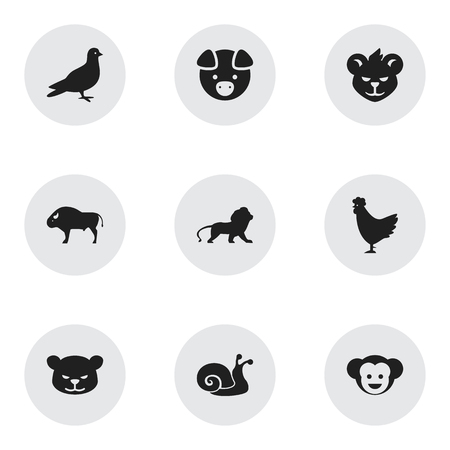 brute: Set Of 9 Editable Nature Icons. Includes Symbols Such As Cock, Baboon, Bison And More. Can Be Used For Web, Mobile, UI And Infographic Design.