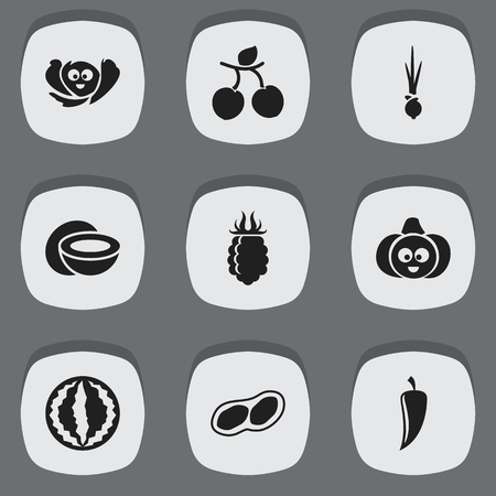 apricot kernels: Set Of 9 Editable Vegetable Icons. Includes Symbols Such As Laughing Cabbage, Onion, Pistachio And More. Can Be Used For Web, Mobile, UI And Infographic Design. Illustration
