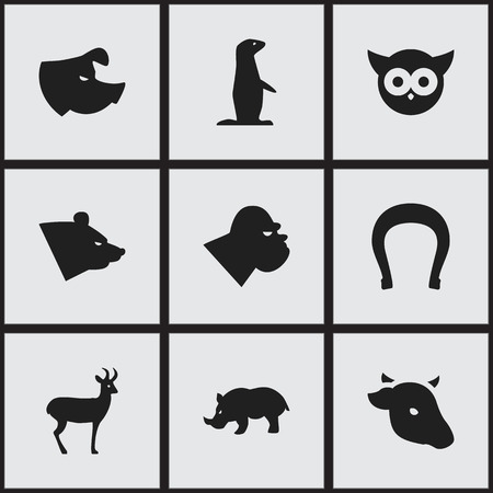brute: Set Of 9 Editable Nature Icons. Includes Symbols Such As Night Fowl, Bull, Groundhog And More. Can Be Used For Web, Mobile, UI And Infographic Design.