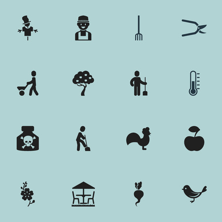bugaboo: Set Of 16 Editable Garden Icons. Includes Symbols Such As Daffodils, Rooster, Bugaboo And More. Illustration