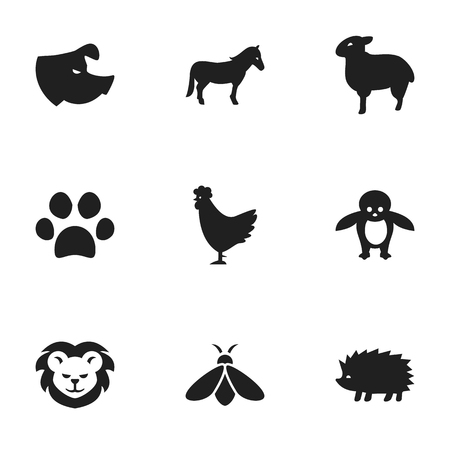 Set Of 9 Editable Zoology Icons. Includes Symbols Such As Lamb, Wildcat, Sow And More. Can Be Used For Web, Mobile, UI And Infographic Design. Illustration