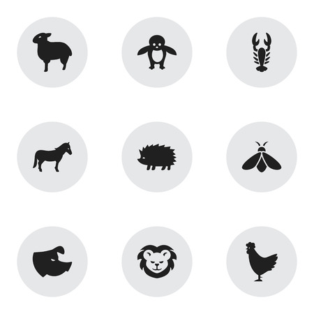 brute: Set Of 9 Editable Nature Icons. Includes Symbols Such As Porcupine, Crawfish, Sow And More. Can Be Used For Web, Mobile, UI And Infographic Design. Illustration