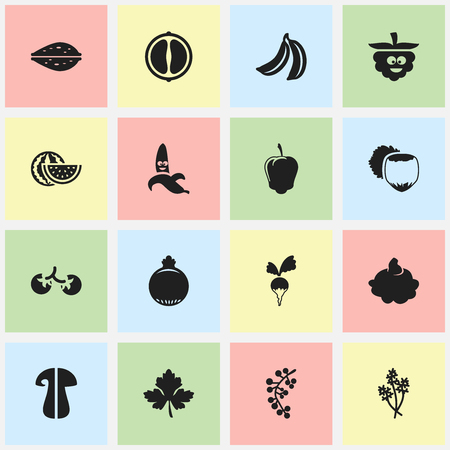 nutshell: Set Of 16 Editable Kitchenware Icons. Includes Symbols Such As Garnet, Jungle Fruit, Fungus And More. Can Be Used For Web, Mobile, UI And Infographic Design. Illustration