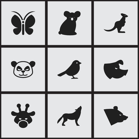 camelopard: Set Of 9 Editable Zoology Icons. Includes Symbols Such As Australian Bear, Camelopard, Wolf And More. Can Be Used For Web, Mobile, UI And Infographic Design.