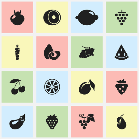petiole: Set Of 16 Editable Berry Icons. Includes Symbols Such As Berry, Lime, Avocado And More.