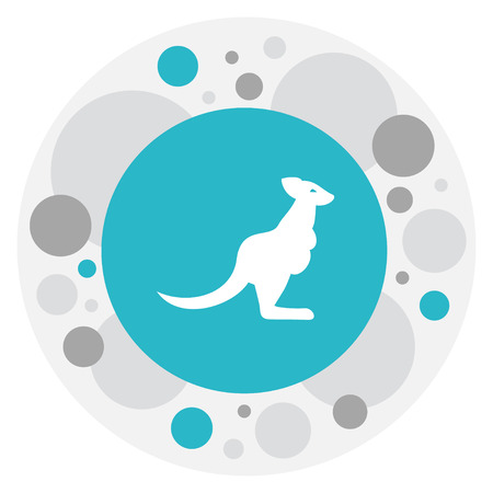 Vector Illustration Of Zoo Symbol On Kangaroo Icon. Premium Quality Isolated Wallaby Element In Trendy Flat Style. Illustration