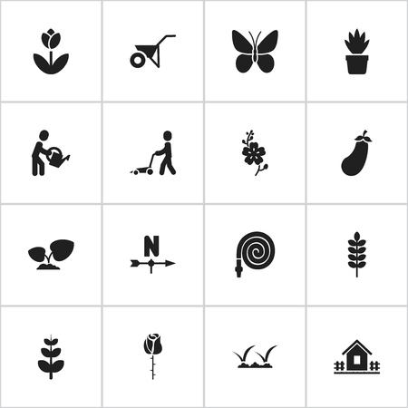 16 편집 가능한 원 예 아이콘의 집합입니다. Aubergine, Leaves, Frond 등의 기호가 포함됩니다. 웹, 모바일, UI 및 인포 그래픽 디자인에 사용할 수 있습니다.