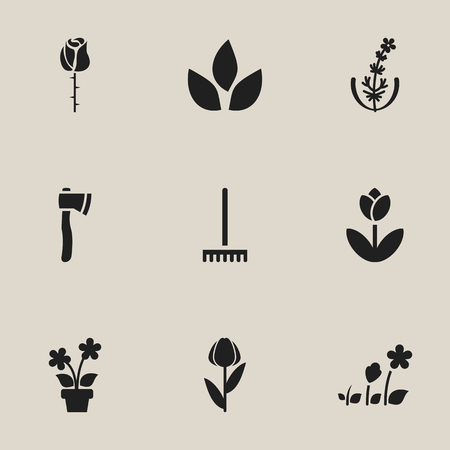 raking: Set Of 9 Editable Planting Icons. Includes Symbols Such As Lilac, Beauty Flower, Tomahawk And More. Can Be Used For Web, Mobile, UI And Infographic Design. Illustration