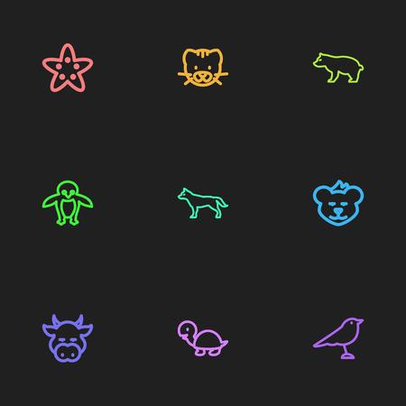 9 편집 가능한 동물원 아이콘의 집합입니다. Cougar, Tortoise, Canine 등의 기호가 포함되어 있습니다. 웹, 모바일, UI 및 인포 그래픽 디자인에 사용할 수 있
