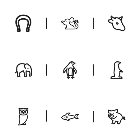 antarctic: Set Of 9 Editable Zoo Icons. Includes Symbols Such As Buffalo, Predator, Diver And More. Can Be Used For Web, Mobile, UI And Infographic Design. Illustration