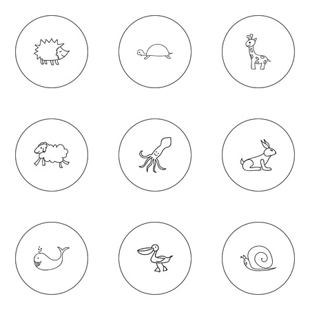 Set Of 9 Editable Animal Icons. Includes Symbols Such As Cachalot, Pelican, Urchin And More. Can Be Used For Web, Mobile, UI And Infographic Design.
