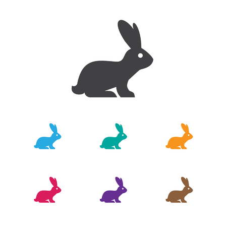 Illustration Of Zoo Symbol On Bunny Icon. Premium Quality Isolated Rabbit Element In Trendy Flat Style.