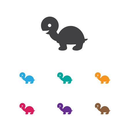 Vector Illustration Of Animal Symbol On Turtle Icon. Premium Quality Isolated Tortoise Element In Trendy Flat Style.