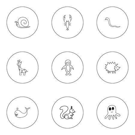 cachalot: Set Of 9 Editable Zoology Icons. Includes Symbols Such As Polar Bird, Cachalot, Lobster And More. Can Be Used For Web, Mobile, UI And Infographic Design.