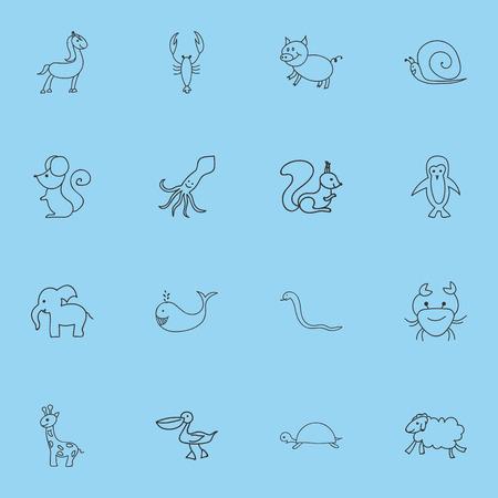 Set Of 16 Editable Zoo Icons. Includes Symbols Such As Swine, Tall Animal, Pony And More. Can Be Used For Web, Mobile, UI And Infographic Design. 일러스트