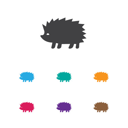 Vector Illustration Of Animal Symbol On Hedgehog Icon. Premium Quality Isolated Porcupine Element In Trendy Flat Style. Illustration