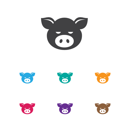 Vector Illustration Of Zoo Symbol On Pork Icon. Premium Quality Isolated Piggy Element In Trendy Flat Style. Illustration