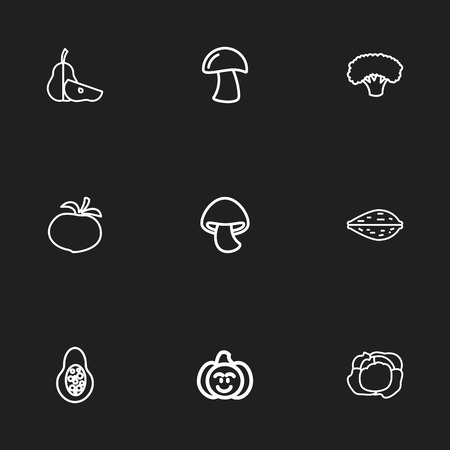 fall leaves: Set Of 9 Editable Food Icons. Includes Symbols Such As Turnip, Sliced Duchess, Cauliflower And More. Can Be Used For Web, Mobile, UI And Infographic Design. Illustration
