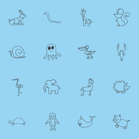 Set Of 16 Editable Zoology Doodles. Includes Symbols Such As Squid, Lobster, Tortoise And More Illustration