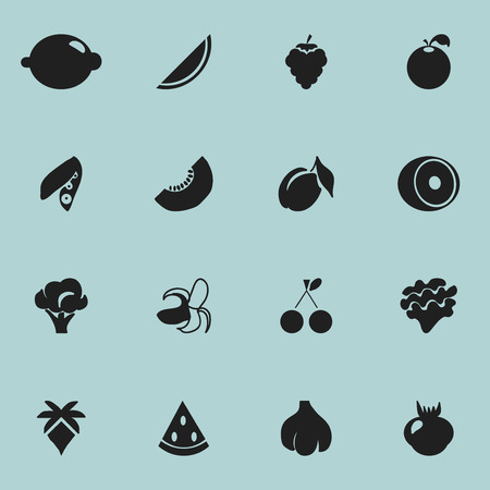 Set Of 16 Editable Berry Icons. Includes Symbols Such As Melon, Lettuce, Banana And More
