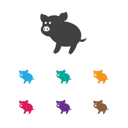 Vector Illustration Of Zoo Symbol On Piggy Icon. Premium Quality Isolated Swine Element In Trendy Flat Style.