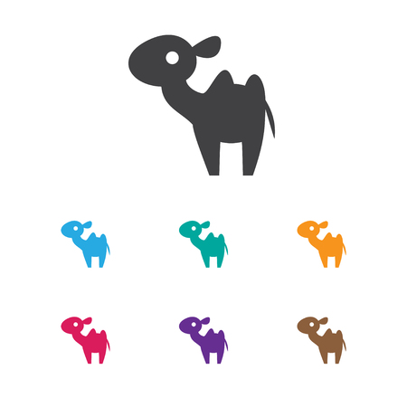 Vector Illustration Of Zoology Symbol On Camel Icon. Premium Quality Isolated Dromedary Element In Trendy Flat Style. Illustration