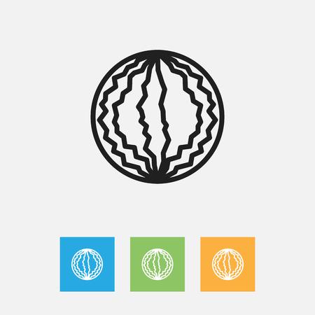 Vector Illustration Of Kitchenware Symbol On Melon Outline