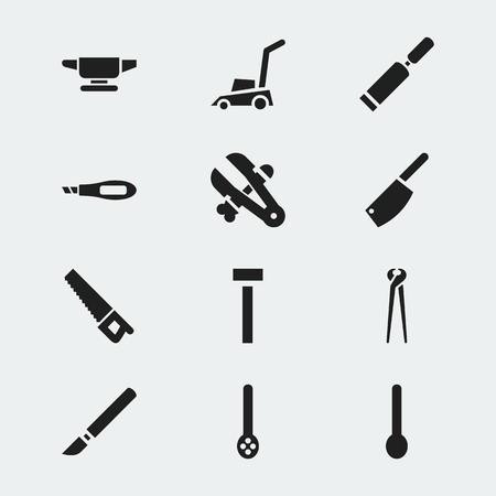 appliances: Set Of 12 Editable Apparatus Icons. Includes Symbols Such As Grass Cutting Machine, Saw, Putty Knife And More