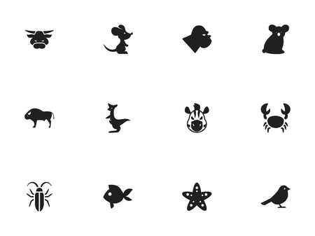Set Of 12 Editable Animal Icons. Includes Symbols Such As Kangaroo, Horse, Bug And More 일러스트