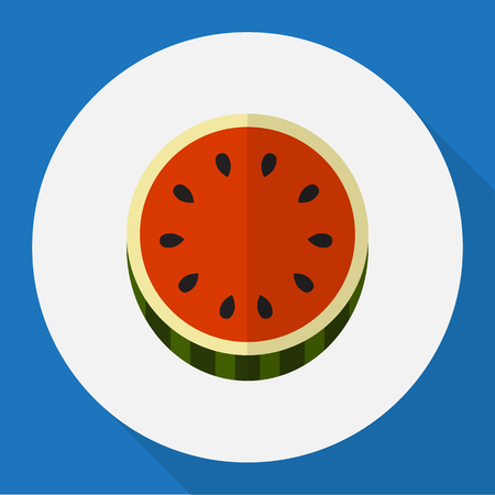 Vector Illustration Of Berry Symbol On Watermelon Flat Icon Illustration