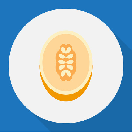 Vector Illustration Of Dessert Symbol On Melon Flat Icon